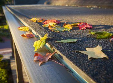 leaf-free-gutters.jpg
