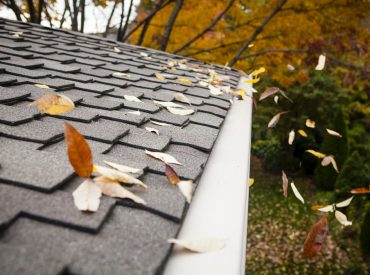 rain-gutter-leaf-guard